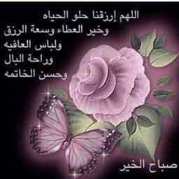 مدرس لغة عربية ابتدائي وضعيف الفهم
