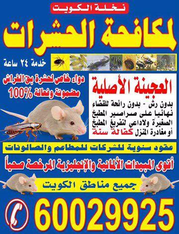 نخلة الكويت لمكافحة الحشرات