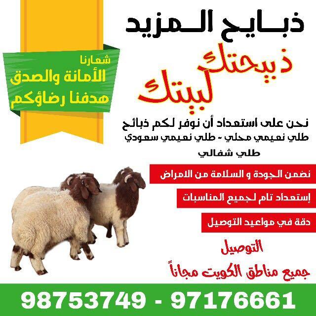 للبيع طليان نعيمي محلي وسعودي