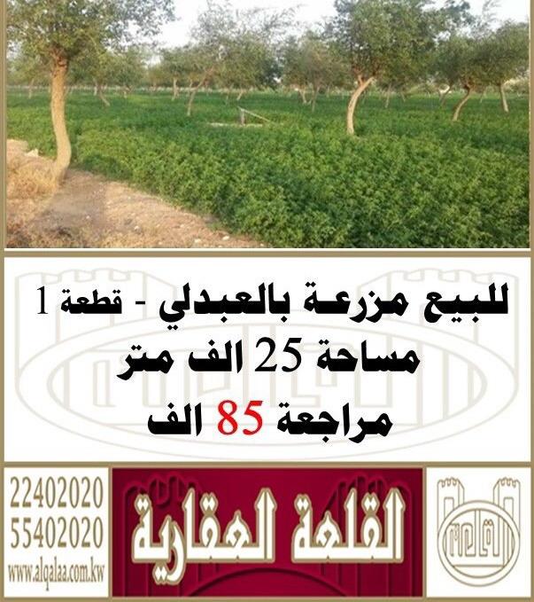 للبيع مزرعه في العبدلي