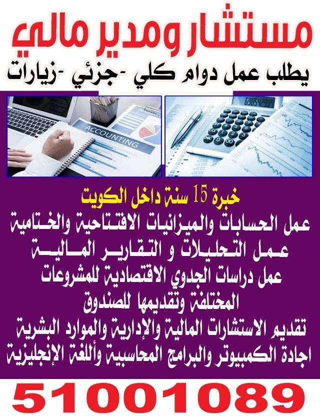 مستشار ومدير مالى 51001089