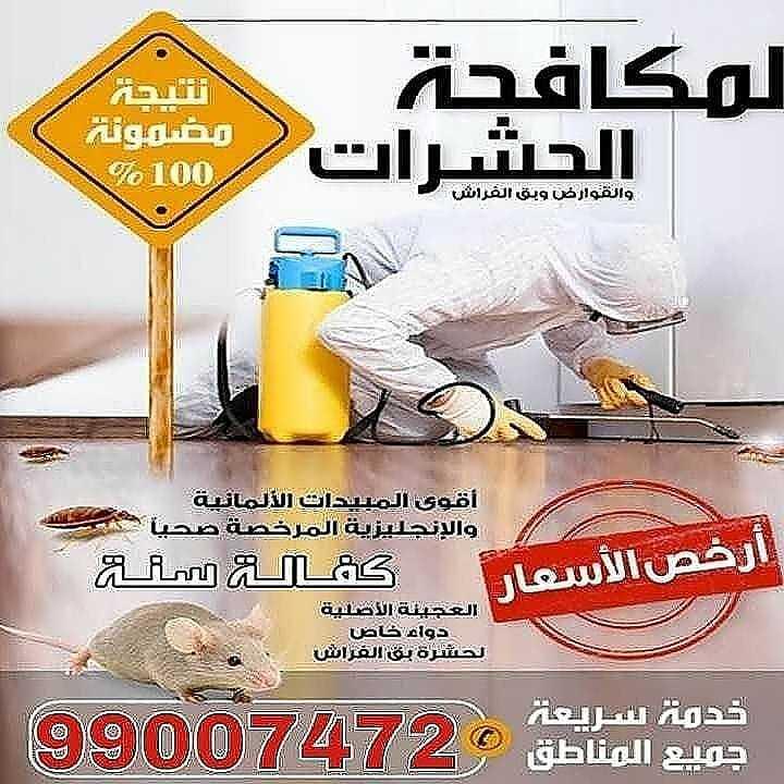 مكافحة حشرات بالكويت - مكافحة حشرات وقوارض
