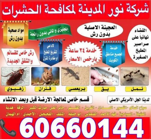 مكافحة حشرات بالكويت 60660144