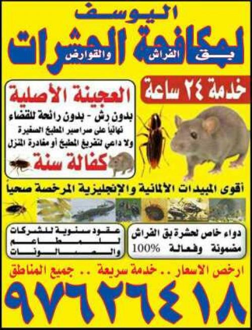 مكافحة حشرات واقوارض